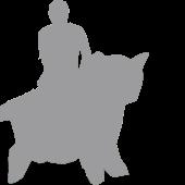 Man Riding a Cat